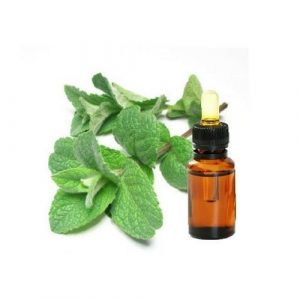 SPEARMINT NATIVE OIL